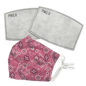 wholesale Protective Masks by Cate with Filters D32 Pink Paisley - One Size Fits All